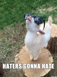 Haters Gonna Hate Meme - haters gonna hate meme on imgur