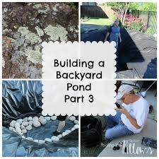 Diy Backyard Ponds Backyards Wondrous Building A Backyard Pond Diy Backyard