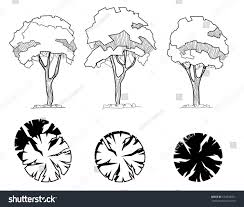 set treetop symbols architectural landscape design stock vector