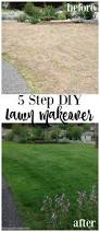 before after lawn makeover project lawn gardens and green lawn 5 step diy lawn makeover using scotts