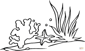 coral reef coloring page 19850