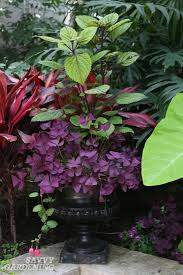 Container Gardening Ideas A Container Garden Sheet