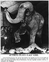 an elephant steps over jayne mansfield u2013 mic henderson