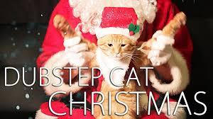 cat christmas dubstep cat christmas