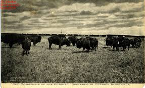 How Do The Eastern Lowlands Differ From The Interior Lowlands Great Plains The Encyclopedia Of Oklahoma History And Culture