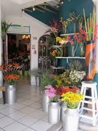 flowers to go vallarta shopping more photos of vallarta stores