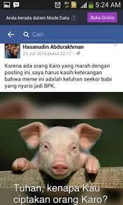 Meme Babi - terima kasih mbue bujur fpi oleh thomas sembiring kompasiana com