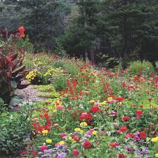 90 best new england flowers u0026 gardens images on pinterest flower