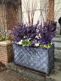 Plant Combination Ideas For Container Gardens - for a cold spring use willows along with pansies and