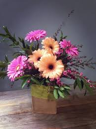1 2 dozen gerber daisy u2013 the flower shoppe
