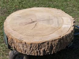 how to build a stump coffee table how tos diy
