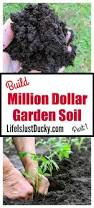 attractive best organic soil for vegetable garden fertilizer for