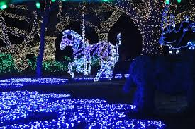 houston zoo lights coupon houston zoo lights beat the crowds at houston s popular holiday event