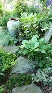 1517 best moss shade rock gardens images on pinterest shade