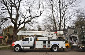 Dte Map Dte To Trim Trees Along Hundreds Of Miles Of Power Lines In Ann