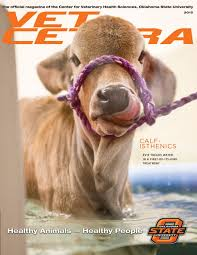 vet cetera magazine 2015 by oklahoma state issuu