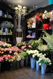 flower stores by appointment only design london flowers look against