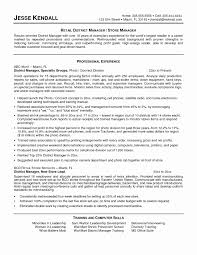 professional manager resume sle it resume lovely district manager resume sle for retail
