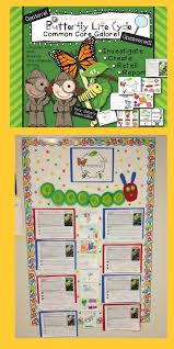little bird kindergarten informational text butterfly close read