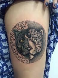dangerous black panther and tiger in yin yang circle