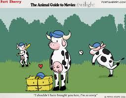animal guide to movies twilight u2013 port sherry