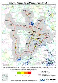 Dvc Map Deer Collisions Latest News