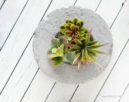 diy faux concrete planter