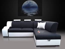 Cool Couch Beds 30 Photos Cool Sofa Beds