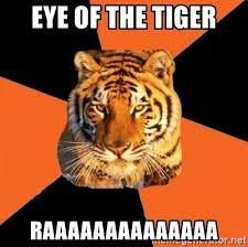Eye Of The Tiger Meme - eye of the tiger raaaaaaaaaaaaaa techie tigers meme generator