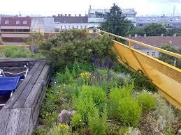 come realizzare un giardino pensile giardino pensile il verde rialzato il fascino giardino