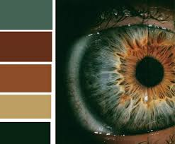 24 best colors images on pinterest colors home and color combos