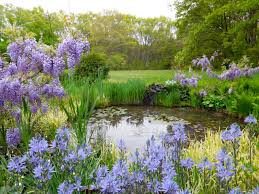 simple cottage garden pond decorate ideas amazing simple with