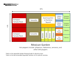 vegetable garden layout design software best source information
