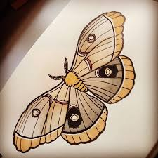 moth traditional design traditional