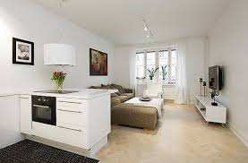 Beautiful  Efficient Design In A One Room Apartment Freshomecom - One room apartment design ideas