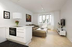 Beautiful  Efficient Design In A One Room Apartment Freshomecom - Apartment room designs