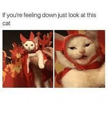 Feeling Down Meme - 25 best memes about feeling down feeling down memes