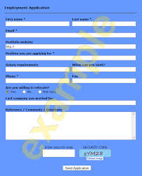 ready to use employment application form