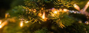 kerst producten avri bloem en tuincentrum bloemist