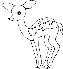 baby deer coloring pages getcoloringpages com