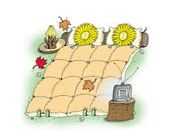 putting your garden to bed what to cut back and what to leave