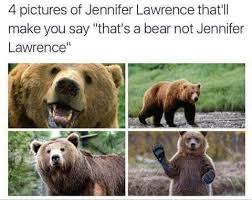 Lawrence Meme - 4 pictures of jennifer lawrence that ll make you say that s a