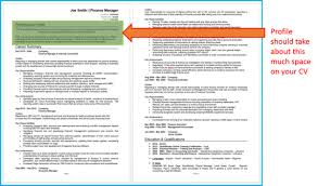 What Makes A Resume Stand Out 32 Cv Writing Tips For 2017 Cv Template