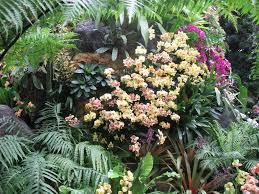 Ny Botanical Garden Membership Our Top Garden Gifts White Flower Farm S