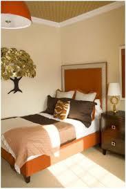 paint ideas for bedrooms boncville com