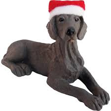sandicast dogs ornaments weimaraner ornament xso23201