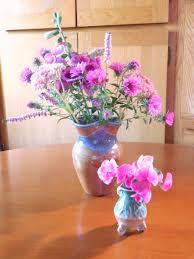 blooming susansflowers