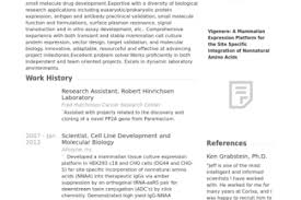 common resume problems intro resume templates accounts officer