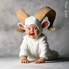 Cute Halloween Costumes Baby Boy 127 Baby Costumes Images Halloween Ideas Baby