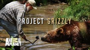 Animal Planet Documentary Grizzly Bears Full Documentaries - jeff the bear man watson and project grizzly steemit
